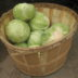 basket-of-cabbages-1-1188486-640x480